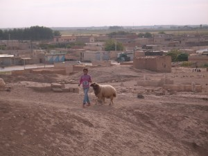 Syrien_Maedchen mit Ziege